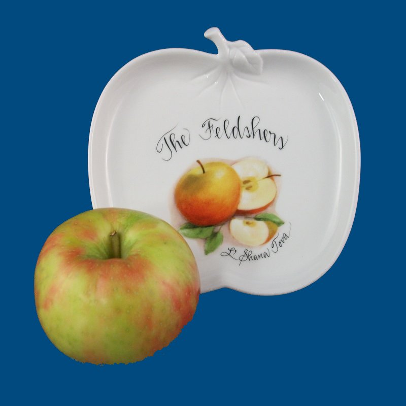 Personalized Hand Painted Apple Plate-Jewish gift, apple plate, apple shaped plate, Rosh Hashanah, Rosh Hashana, porcelain, personalized gift, hand painted gifts, hand painted gift, holiday gift, Judaica