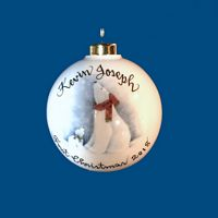 Hand Painted Personalized  Christmas Ball w/Polar Bear*-gift idea, personalized gifts, christmas, christmas gifts, christmas gift ideas, xmas ornaments, christmas ornaments, gifts for christmas, present ideas, ornament, christmas tree ornaments, personalized christmas ornaments, homemade christmas ornament, christmas balls, christmas ball decorations, ornaments, first christmas ornaments, christmas ball ornament, engraved decorations